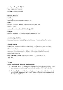 PDF Olarak İncele - Eskişehir Osmangazi Üniversitesi