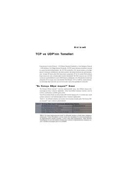TCP ve UDP`nin Temelleri