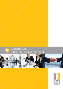 KurumsaL InstItutIonalIzatIon