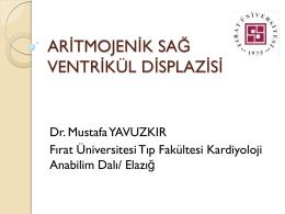 Mustafa Yavuzkır