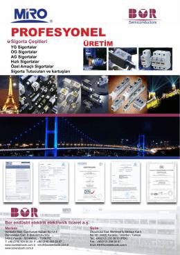 PROFESYONEL - Bor Elektronik