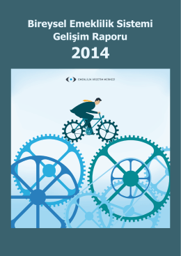 Bireysel Emeklilik Sistemi Gelişim Raporu 2014