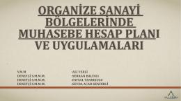 organize sanayi bölgelerinde hesap planı