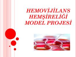 hemovijilans hemşireliği model projesi