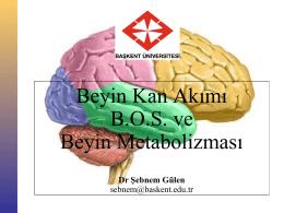 Beyin Kan Akımı B.O.S. ve Beyin Metabolizması