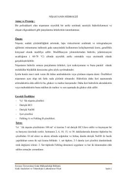 Nişastanın Hidrolizi - Erciyes Üniversitesi | Gıda Mühendisliği Bölümü