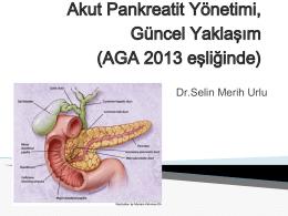 Akut Pankreatit Yönetimi, Güncel Yaklaşım (AGA 2013 eşliğinde)