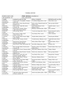 yemek listesi kuruluşun adı özel burak anaokulu ait olduğu ay 2015