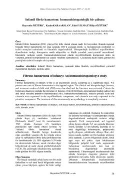 Infantil fibröz hamartom - Düzce Üniversitesi Tıp Fakültesi Dergisi