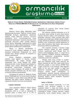 Kabuk Bocegi - Ege Ormancılık Araştırma Enstitüsü Müdürlüğü