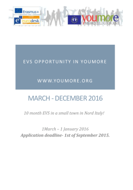 EVS Opportunity in Youmore www.youmore.org