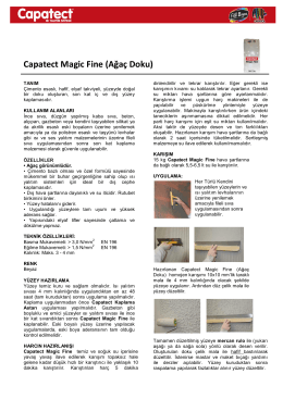 Capatect Magic Fine (Ağaç Doku)