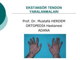 ekstansör tendon yaralanmaları