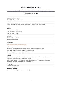 CV in PDF format