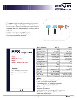 Model _EFS31