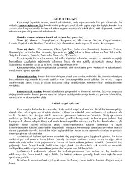 KEMOTERAPİ - UzmanVeteriner.Com.tr | Uzman Veteriner