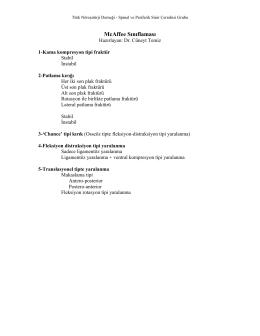 McAffee Sınıflaması - Türk Nöroşirurji Derneği Spinal ve Periferik