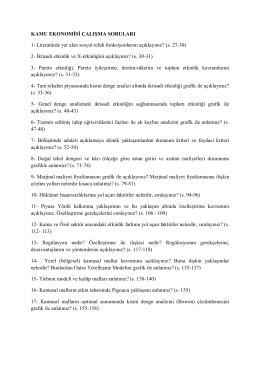 KAMU EKONOMİSİ ÇALIŞMA SORULARI 1