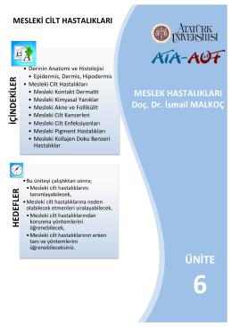 ÜNİTE - Anadolu İş Sağlığı ve Güvenliği