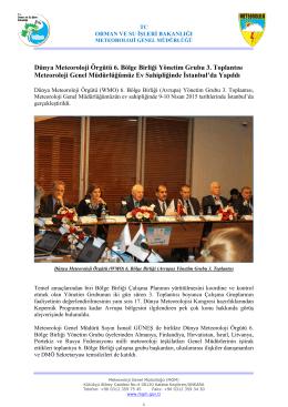 Dünya Meteoroloji Örgütü 6. Bölge Birliği Yönetim Grubu 3