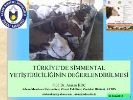Türkiye`de Simmental sığırı yetiştiriciliği