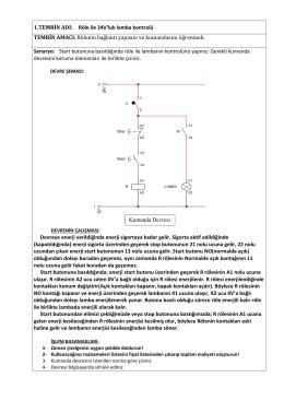 Temrin No : 1 – Röle ile 24V`luk lamba kontrolü