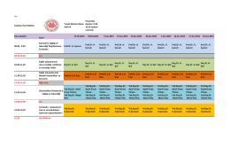 İş Sağlığı ve Güvenliği 2015 Çapa Tıp Fakültesi Programı.