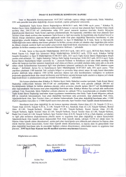 2015-311 komisyon raporu