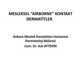 Airborne Mesleksel Dermatozlara Klinik