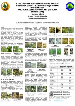 Batı Akdeniz Bölgesinde Doğal Yayılış Gösteren Önemli Bazı Odun
