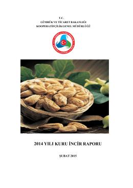 2014 yılı kuru incir raporu - Gümrük ve Ticaret Bakanlığı