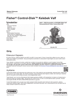 Fisherr Control-Disk™ Kelebek Valf