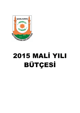 2015 mali yılı bütçe