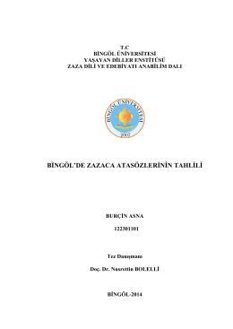 Tez  - Bingöl Üniversitesi