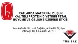 Arzu KABASAKAL