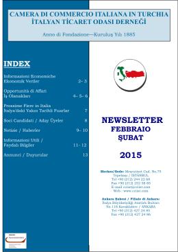 NEWSLETTER 2015 - İhale Özelleştirme Yatırım
