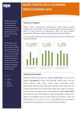 REIDIN Türkiye Sosyo-Ekonomik Derecelendirme