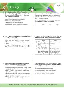 Türkçe Kazanım Kavrama Testleri 2015