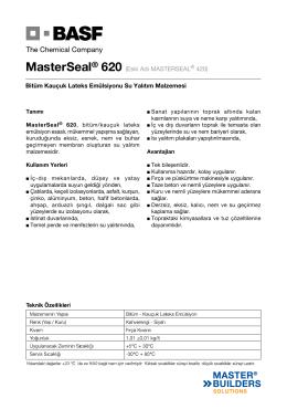 MasterSeal® 620 (Eski Adı MASTERSEAL® 420