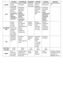 Saha Jeolojisi Sınava Hazırlık Tablo