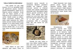 tarla faresi ile mücadele - Kırıkkale İl Gıda Tarım ve Hayvancılık