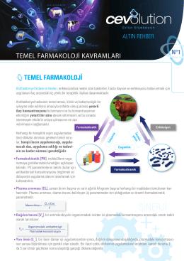 SİNERJİ - Transmune