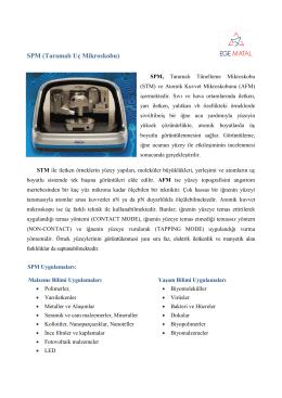 SPM (Taramalı Uç Mikroskobu) - Ege