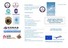 Mesleki İngilizce Eğitiminde Yenilikçi Yaklaşımların Avrupa