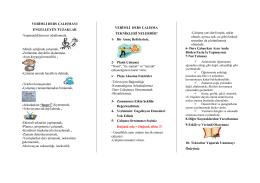 verimli ders broşürü - Kartal İmam Hatip Ortaokulu