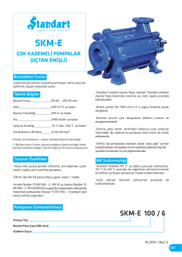 SKM-E 100 / 6 - Standart Pompa