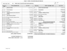 Tablo 1.1. Bütçe Uygulama Sonuçları Tablosu