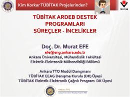 İNCELİKLER Doç. Dr. Murat EFE