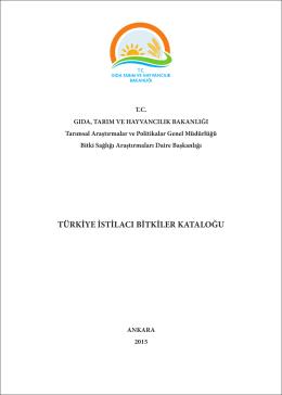 Echinochloa oryzicola - I-BIL