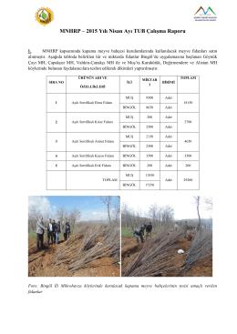 Nisan 2015 Aylık Çalışma Raporu